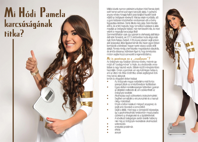 07a Pamela presztizsstyle01